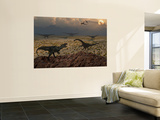 An Allosaurus Dinosaur Spies a Group of Young Diplodocus Herbivores Posters par  Stocktrek Images