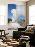 Castle Geyser Eruption, Upper Geyser Basin Geothermal Area, Yellowstone National Park, Wyoming Art by  Stocktrek Images