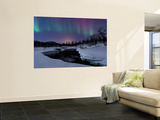 Aurora Borealis over Blafjellelva River in Troms County, Norway Plakat af Stocktrek Images,