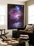 M42, the Orion Nebula (Top), and NGC 1977, a Reflection Nebula (Bottom) Umělecké plakáty
