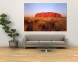 Ayers Rock, Uluru-Kata Tjuta Nationalpark, Australien Plakater