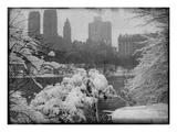 New York City In Winter IX Fotodruck