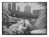 New York City In Winter IX Photographic Print