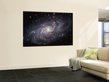 The Triangulum Galaxy Affiches