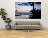 Palm Tree on the Beach, Wailua Bay, Kauai, Hawaii, USA Posters