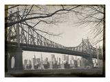 New York City In Winter II Photographic Print