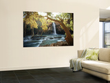 Scenic View of a Waterfall on Havasu Creek Posters by W.E. Garrett