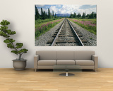 Alaska Railroad Tracks Lined on Either Side by Pink Fireweed Art by Rich Reid
