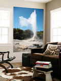 Lady Knox Geyser, Wai-O-Tapu Geothermal Area, Taupo Volcanic Zone, New Zealand Prints by  Stocktrek Images