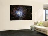 The Iris Nebula Poster