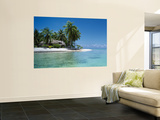 Palm Trees on the Beach, Tikehau, French Polynesia Prints