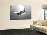 A Grumman F8F Bearcat in Flight Posters by  Stocktrek Images