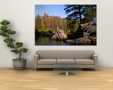 Deciduous Trees along Moose River, Adirondack Mountains, Adirondack State Park, New York, USA Posters