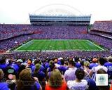 Ben Hill Griffin Stadium University of Florida Gators 2011 Photo