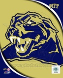 University of Pittsburgh Panthers Team Logo Photographie
