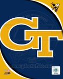 Georgia Tech Yellow Jackets Team Logo Photographie