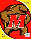 University of Maryland Terrapins Team Logo Photo