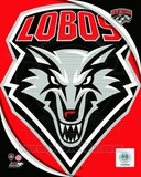 University of New Mexico Lobos Team Logo Photo