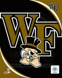Wake Forest University Demon Deacons Team Logo Photo