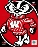 University of Wisconsin Badgers Team Logo Photo