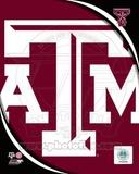Texas A&M University Aggies Team Logo Photo