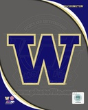 University of Washington Huskies Team Logo Photo