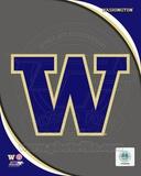 University of Washington Huskies Team Logo Photo