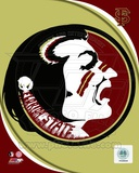 Florida State University Seminoles Team Logo Photo