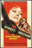 Sunset Blvd Framed Canvas Print