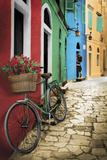 Roses rouges sur vélo vert Posters