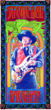 Stevie Ray Vaughan Commemoration Poster by Bob Masse