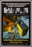 Where Eagles Dare Framed Canvas Print