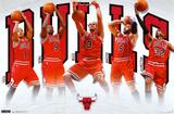 Bulls - Team 2011 Fotografía