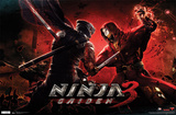 Ninja Gaiden 3 - Battle Photo