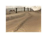 Beach Fence Giclee Print by Derek Jecxz