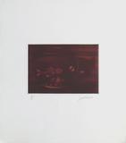 Les cinq sens : la vue Limited Edition by Laurent Schkolnyk