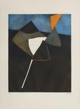 Bertrand Dorny - Cerf-Volant Noir Limitovaná edice