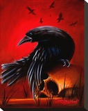 Crow Stretched Canvas Print by James Strickland
