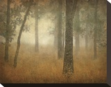 Oak Grove in Fog, Study 24 Stretched Canvas Print by William Guion