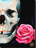Rose Skull Stretched Canvas Print by Christina Ramos