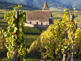 Hunawihr, Alsatian Wine Route, Alsace Region, Haut-Rhin, France Photographic Print by Walter Bibikow