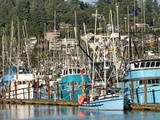 Old Fishing Boats in Harbor at Sunset, Newport, Oregon, Usa Photographic Print by Bill Bachmann