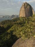 Sugar Loaf, Rio De Janeiro, Brazil Photographic Print by Pete Oxford