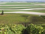 View of Vineyards and Fields, Mont Aime, Champagne Region, Marne, France Photographic Print by Walter Bibikow