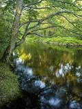 The Taunton River in Bridgewater, Massachusetts, Usa Fotodruck von Jerry & Marcy Monkman