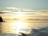 Sunset, Southeast Near Ketchikan, Alaska, Usa Photographic Print by Savanah Stewart