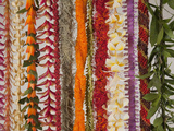 Hawaiian Flower Lei Strand Photographic Print by Douglas Peebles