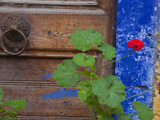 Geraniums and Old Door in Chania, Crete, Greece Photographic Print by Darrell Gulin