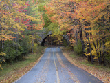 Road Through Acadia National Park in the Fall, Maine, Usa Photographic Print by Joanne Wells