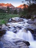 Stream Runs Through Lamoille Canyon in the Ruby Mountains, Nevada, Usa Photographic Print by Dennis Flaherty